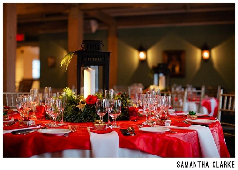 Christmas Wedding The Doctors House 5324