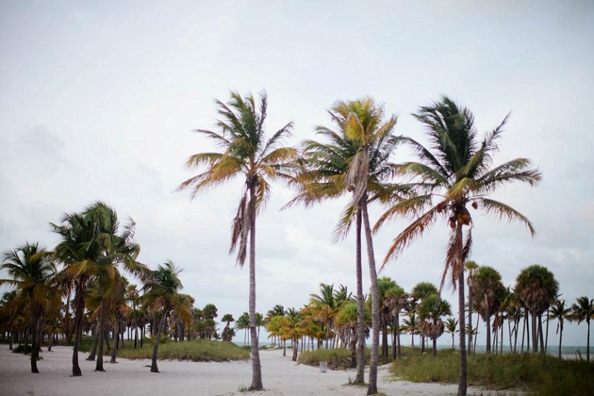 Miami-Beach-Elopement-Inspiration_0015